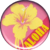 Aloha Grapefruit-Orange
